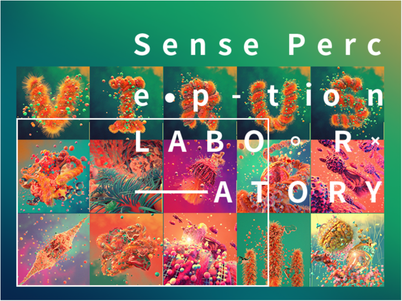 Sense Perception LABORATORY——